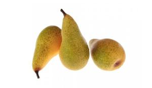 Frutta e Verdura Finte